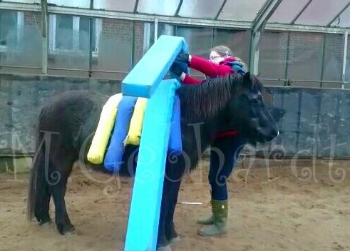 Da ist doch eine Menge Platz auf so einem kurzen Pony