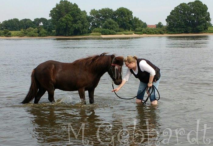 Gladur und ich planschen in der Elbe