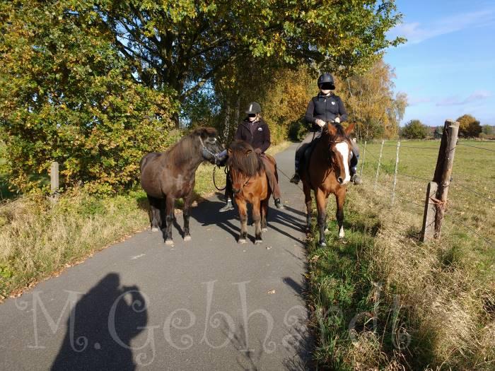 Ein schöner Spaziergang mit Lukki und Kalle