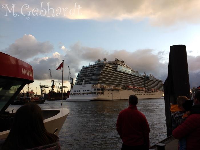 Einlaufendes Kreuzfahrtschiff Regal Princess
