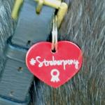 """Soulhorse Marke """"Streberpony"""""""