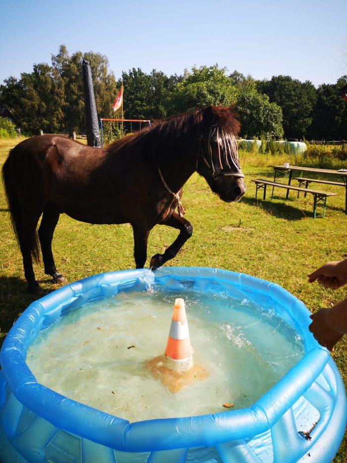 gladur  am pool