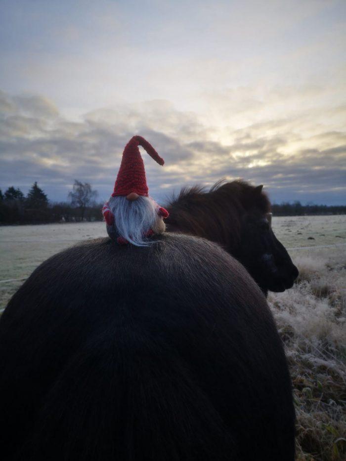 Der Julnisse sitzt auf Gladurs Kruppe
