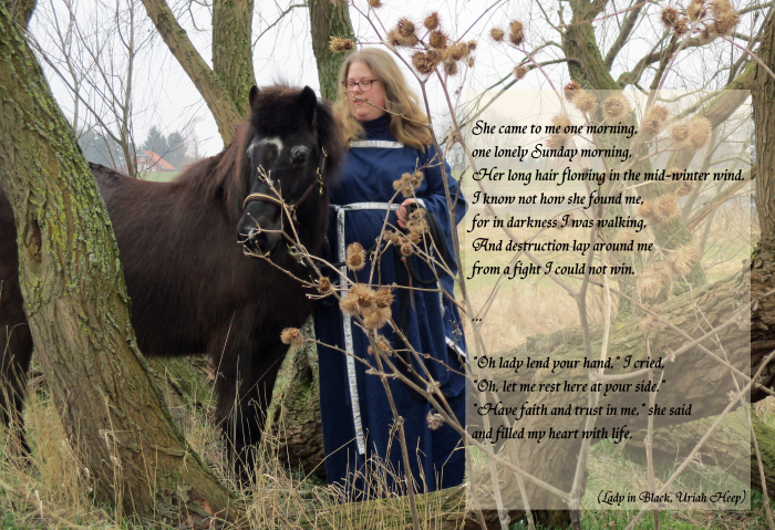 Gladur und ich in den Weiden